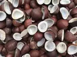 Health Tips : सूखे नारियल केवल स्वाद ही नहीं महिलाओ की इन बीमारियों में है रामबाण औषधि